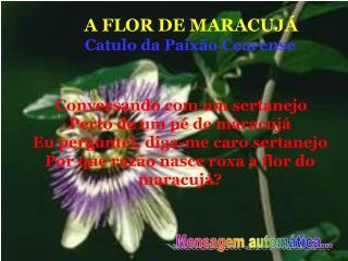 A FLOR DE MARACUJÁ Catulo da Paixão Cearense