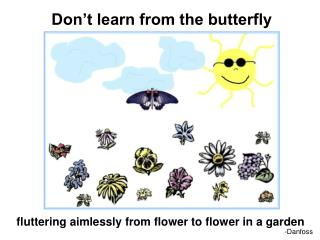 Don't learn from the butterfly