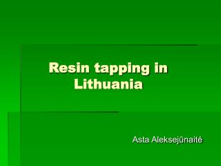 Resin tapping in Lithuania