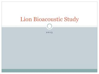 Lion Bioacoustic Study