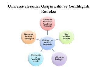 Üniversitelerarası Girişimcilik ve Yenilikçilik Endeksi
