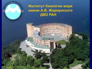 Институт биологии моря                имени А.В. Жирмунского                         ДВО РАН