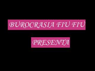 BUROCRASIA FIU FIU