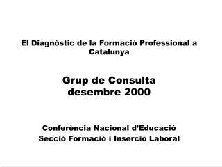 El Diagnòstic de la Formació Professional a Catalunya Grup de Consulta desembre 2000
