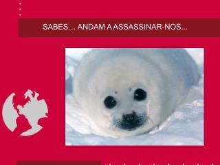 SABES… ANDAM A ASSASSINAR-NOS...