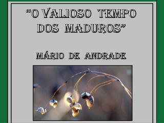 """""""O Valioso  Tempo Dos  Maduros"""" Mário  de  Andrade"""
