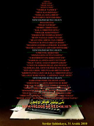 Serdar Şahinkaya, 31 Aralık 2010