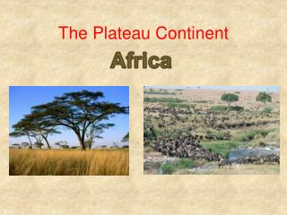 The Plateau Continent