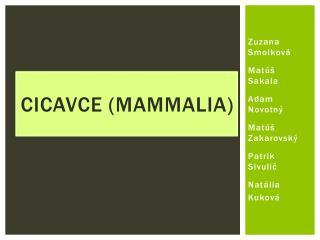 Cicavce ( Mammalia )