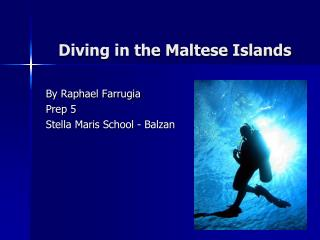 Diving in the Maltese Islands