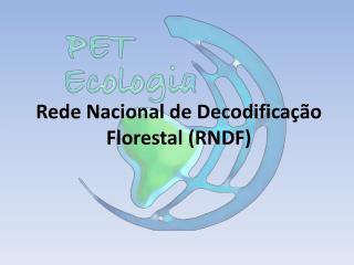 Rede Nacional de Decodificação Florestal (RNDF)