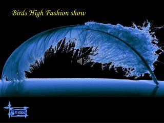 Birds High Fashion show