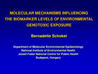 MOLECULAR MECHANISMS INFLUENCING THE BIOMARKER LEVELS OF ENVIRONMENTAL GENOTOXIC EXPOSURE