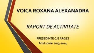 VOICA ROXANA ALEXANADRA RAPORT DE ACTIVITATE