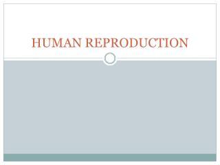 HUMAN REPRODUCTION