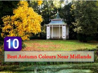 10 Best Autumn Colours Near Midlands
