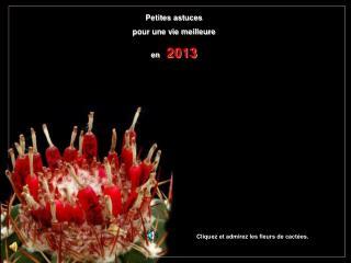 Petites astuces pour une vie meilleure en    2013