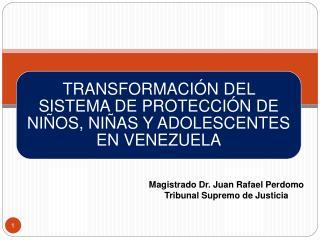 Magistrado Dr. Juan Rafael Perdomo Tribunal Supremo de Justicia