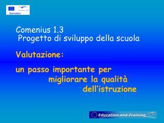 Comenius  1.3  Progetto di sviluppo della scuola