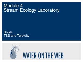 Module 4  Stream Ecology Laboratory
