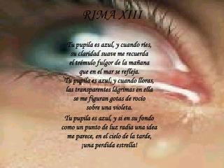 RIMA XIII