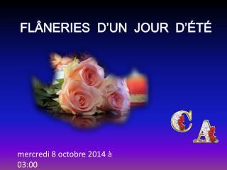 FLÂNERIES  D'UN  JOUR  D'ÉTÉ