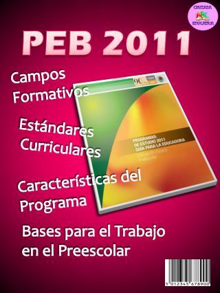 PEB 2011