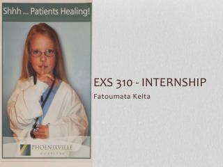 EXS 310 - internship