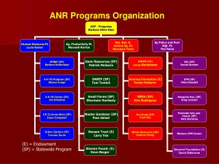 ANR Programs Organization