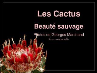 Les Cactus  Beauté sauvage Photos de Georges Marchand Revu et corrigé par MuMu