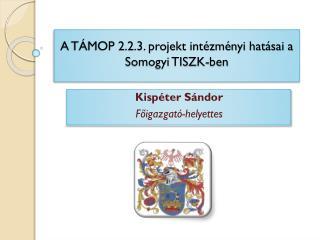 A TÁMOP 2.2.3. projekt intézményi hatásai a  Somogyi TISZK-ben
