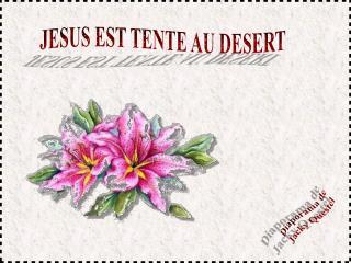 JESUS EST TENTE AU DESERT