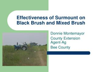 Effectiveness of Surmount on Black Brush and Mixed Brush