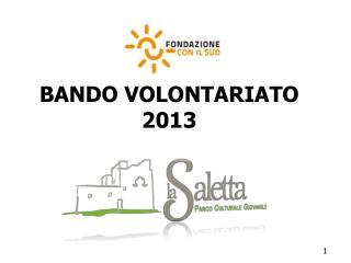 BANDO VOLONTARIATO  2013
