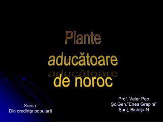 """Prof. Valer Pop Şc.Gen.""""Enea Grapini"""" Şanţ, Bistriţa-N"""