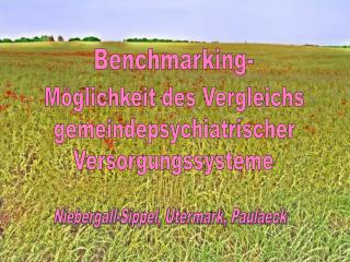 Benchmarking-