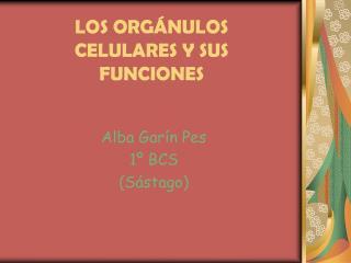 LOS ORG NULOS CELULARES Y SUS FUNCIONES