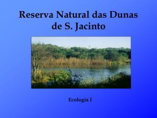 Reserva Natural das Dunas de S. Jacinto