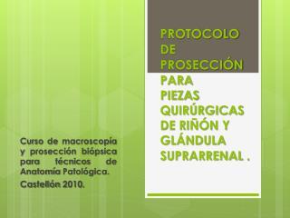 Curso de macroscopía y prosección biópsica para técnicos de Anatomía Patológica. Castellón 2010.