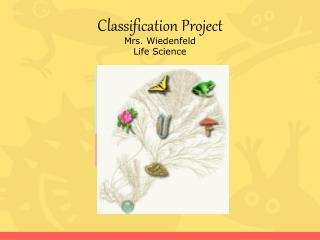 Classification Project  Mrs. Wiedenfeld Life Science