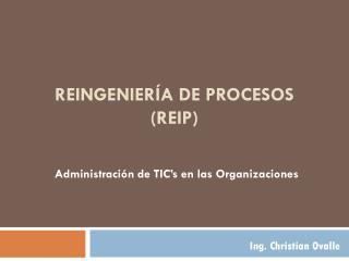 Reingeniería de Procesos ( ReIP )