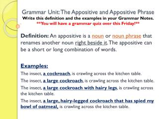 Identify the appositive or appositive phrase in the sentences below.