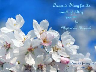 Prayer  to Mary  for  the  month  of May ( prayer  667)