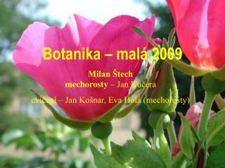 Botanika – malá 2009