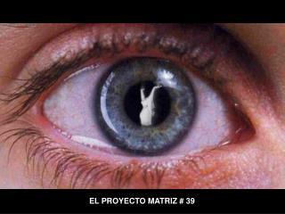 EL PROYECTO MATRIZ # 39