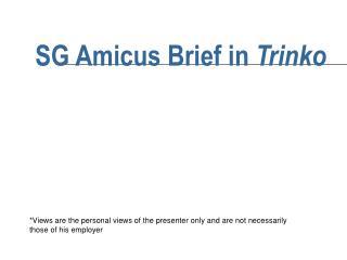 SG Amicus Brief in  Trinko