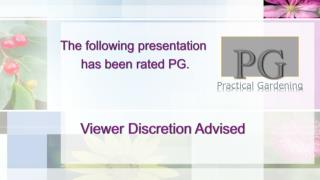 The following presentation  has been rated PG.