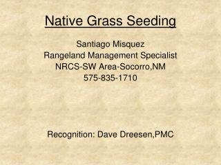 Native Grass Seeding