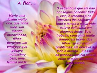 A flor...