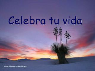 Celebra tu vida